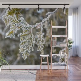 Frost covered tree leaves Wall Mural
