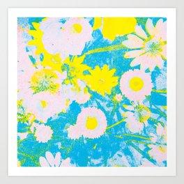 wild echinacea  Art Print