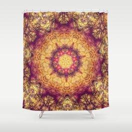 Indian carpet Shower Curtain