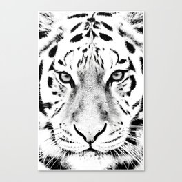 White Tiger Print Canvas Print