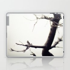 Small Tree Laptop & iPad Skin