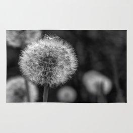 Monochromatic dandelion on black Rug