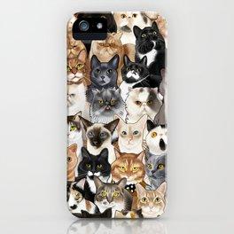 Catmina 2017 - THREE iPhone Case