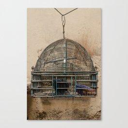 Bird Cage (India) Canvas Print