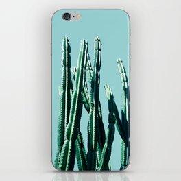 Green Cactus 7 iPhone Skin