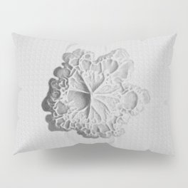 There's even more growing Pillow Sham