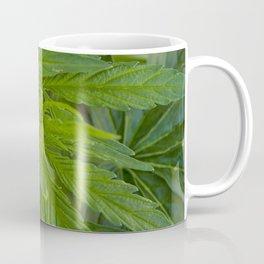 Cannabis Leaves Coffee Mug