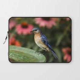 Perched Eastern  BlueBird Laptop Sleeve