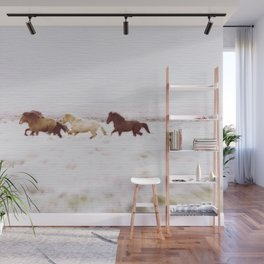 WILD AND FREE 5 - HORSES OF ICELAND Wall Mural
