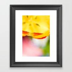 Cut through the Garden III Framed Art Print
