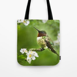 Hummingbird Flora Tote Bag