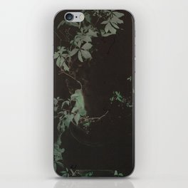 a morbid longing for the picturesque iPhone Skin