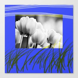 tulips in blue 2 Canvas Print