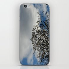 Popcorn Leaves iPhone & iPod Skin