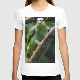green parrot blue head T-shirt