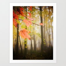 Autumn Fire Art Print