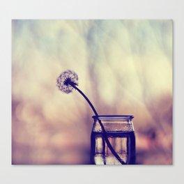 dandelion morning Canvas Print