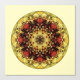 Sacred Geometry Mandalas 4 Canvas Print