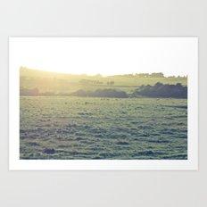 Light in the fields Art Print