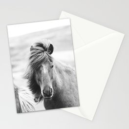 Horse Photograph in Iceland Stationery Cards