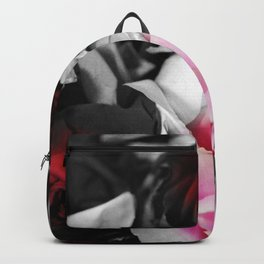 Black and White Roses Fade to Pink and Red Backpack