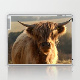 Young Highland Cow Laptop & iPad Skin