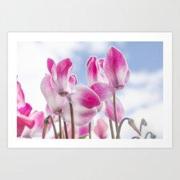 Summer Flora Art Print