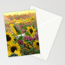 Sunflower Fields Stationery Cards