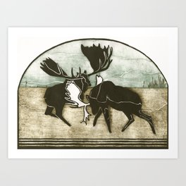 Moose Fight Art Print