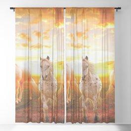Five Beautiful Horses At Sunset Ultra HD Sheer Curtain