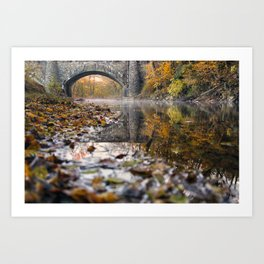 Stream of Life Art Print