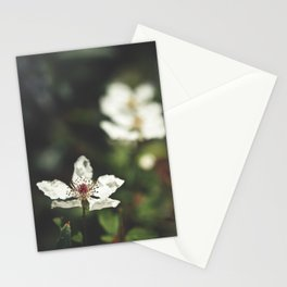 Sweet, Sweet Lies Stationery Cards