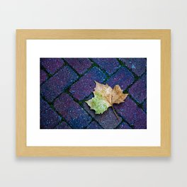 fall into place Framed Art Print