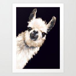 Sneaky Llama in Black Art Print