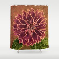 dahlia Shower Curtains featuring Dahlia  by maggs326