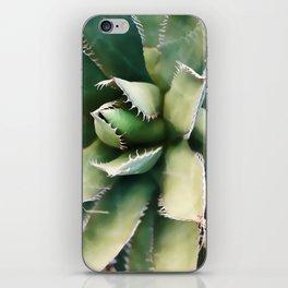 Cactus Close-Up iPhone Skin