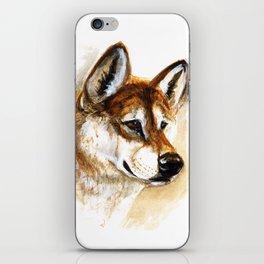 Dingo realistic iPhone Skin
