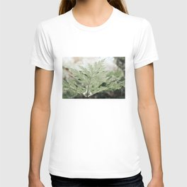 Plantlife, ferns with plant veins T-shirt