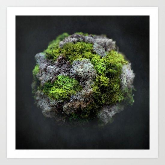 The Moss Globe Art Print