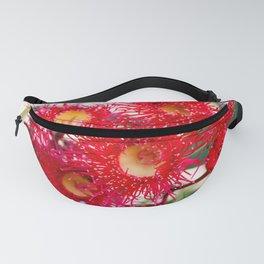 Red Flowering Gum 2. Sydney. Australia Fanny Pack