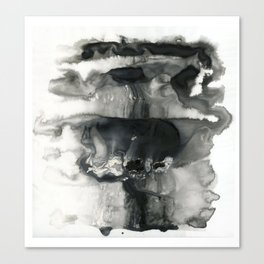 Black and White Abstract Washes Canvas Print