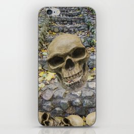 Road of Death iPhone Skin