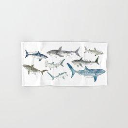 Sharks Hand & Bath Towel