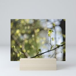 Nature's Bokeh Mini Art Print