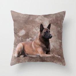 Malinois  Belgian shepherd - Mechelaar Throw Pillow