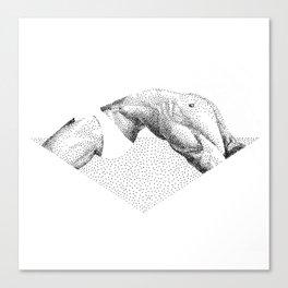 Doood 4 Canvas Print