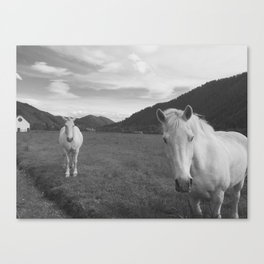 Happy White Horses - Black and White - Sun Valley, Idaho Canvas Print
