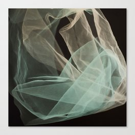 Abstract veil background Canvas Print