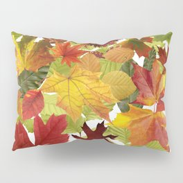 Autumn Fall Leaves Pillow Sham