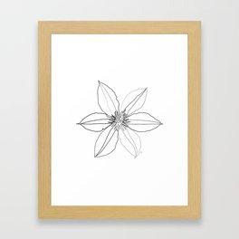 """ Botanical Collection "" - Clematis Flower Framed Art Print"